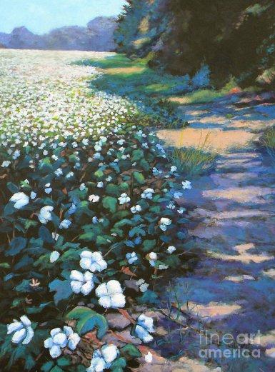 cotton-field-jeanette-jarmon